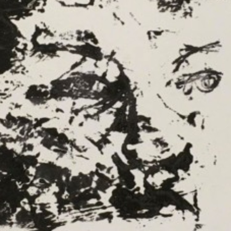 Illustration du profil de Sabine Deltenre